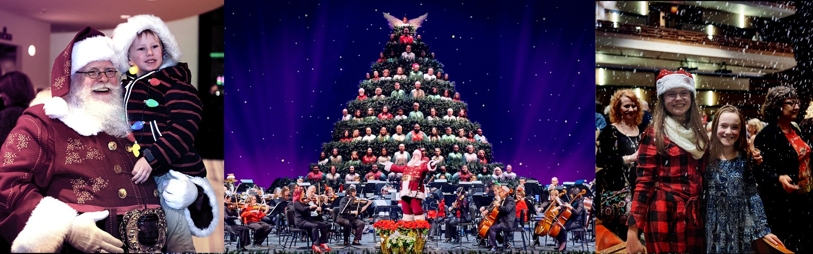 Singing Christmas Tree 2019.Magic Of Christmas And The Singing Christmas Tree Charlotte